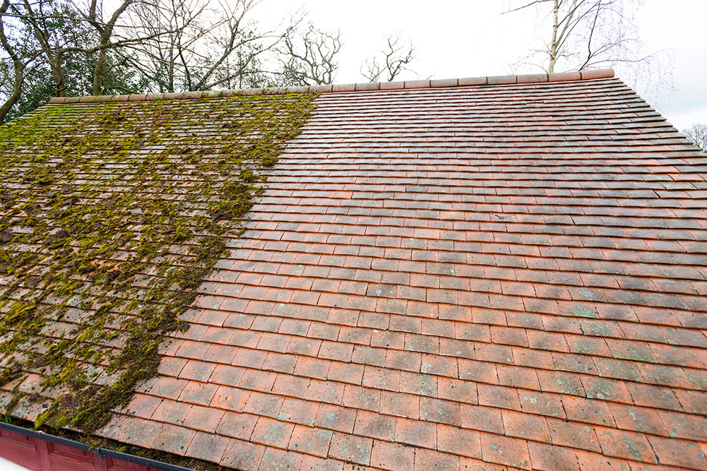 Just Fascias Now Offering Roof Cleaning and Moss Removal Services To Kent  and Surrey Homeowners – News Anyway
